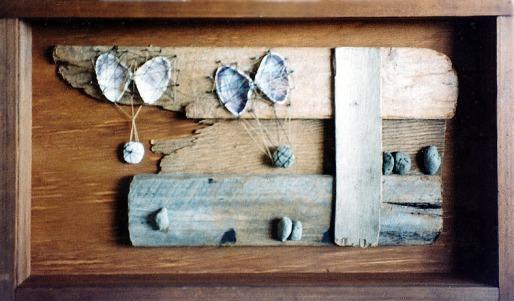 Drift wood, shells and stones
